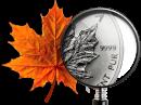 Переезд в Канаду: бизнес-иммиграция