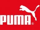Спортивная одежда Puma: описание бренда