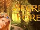 Игровой автомат Secret Forest и мир развлечений